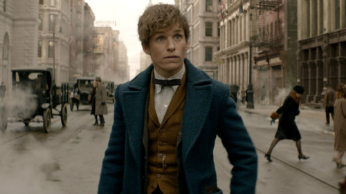 Eddie Redmayne in the 'Fantastic Beasts and Where To Find Them' Trailer.