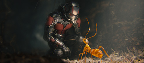Ant-Man Movie Paul Rudd