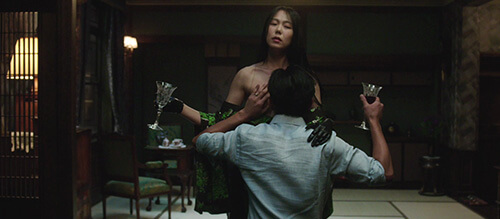 The Handmaiden Park Chan Wook Sexy Film