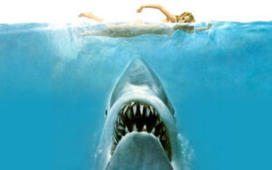 Jaws 1975 Snapshot Review