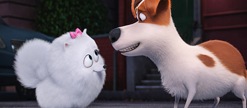 Illumination Entertainment Secret Life of Pets
