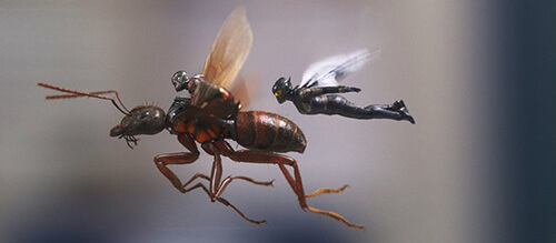 Ant-Man 2 Marvel Movie